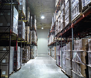Cold Storage for Frozen food distribution